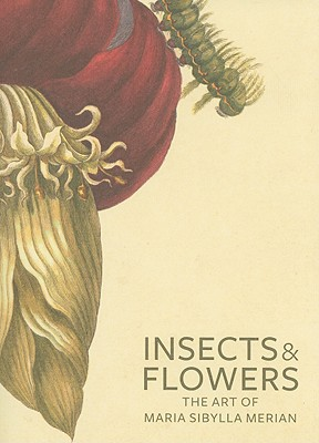 Insects & Flowers By Brafman, David/ Schrader, Stephanie